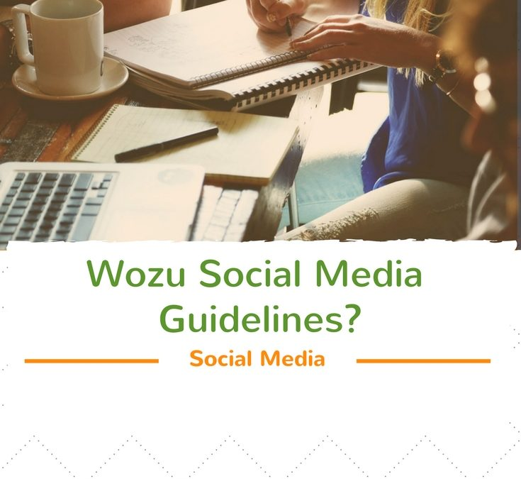 Wozu Social Media Guidelines erstellen?